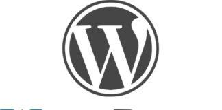 Hosting na wordpressie